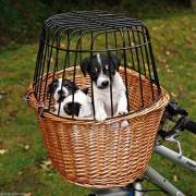 Cestino per bici per cani e gatti Trixie per cane Vimini- GRIGLIA BICI MANUBRIO